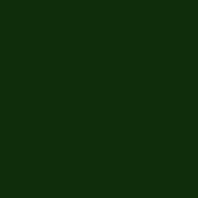 Colori per porcellana Verde Nero
