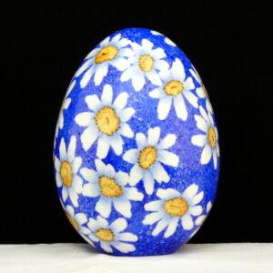 Uovo con margherite e sfondo blu